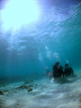 体験ダイビング5