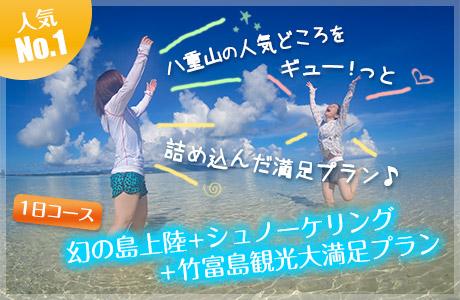 幻の島上陸+シュノーケリング+竹富島観光 大満足プラン