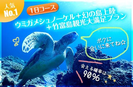ウミガメシュノーケリング+幻の島上陸+竹富島観光 大満足プラン